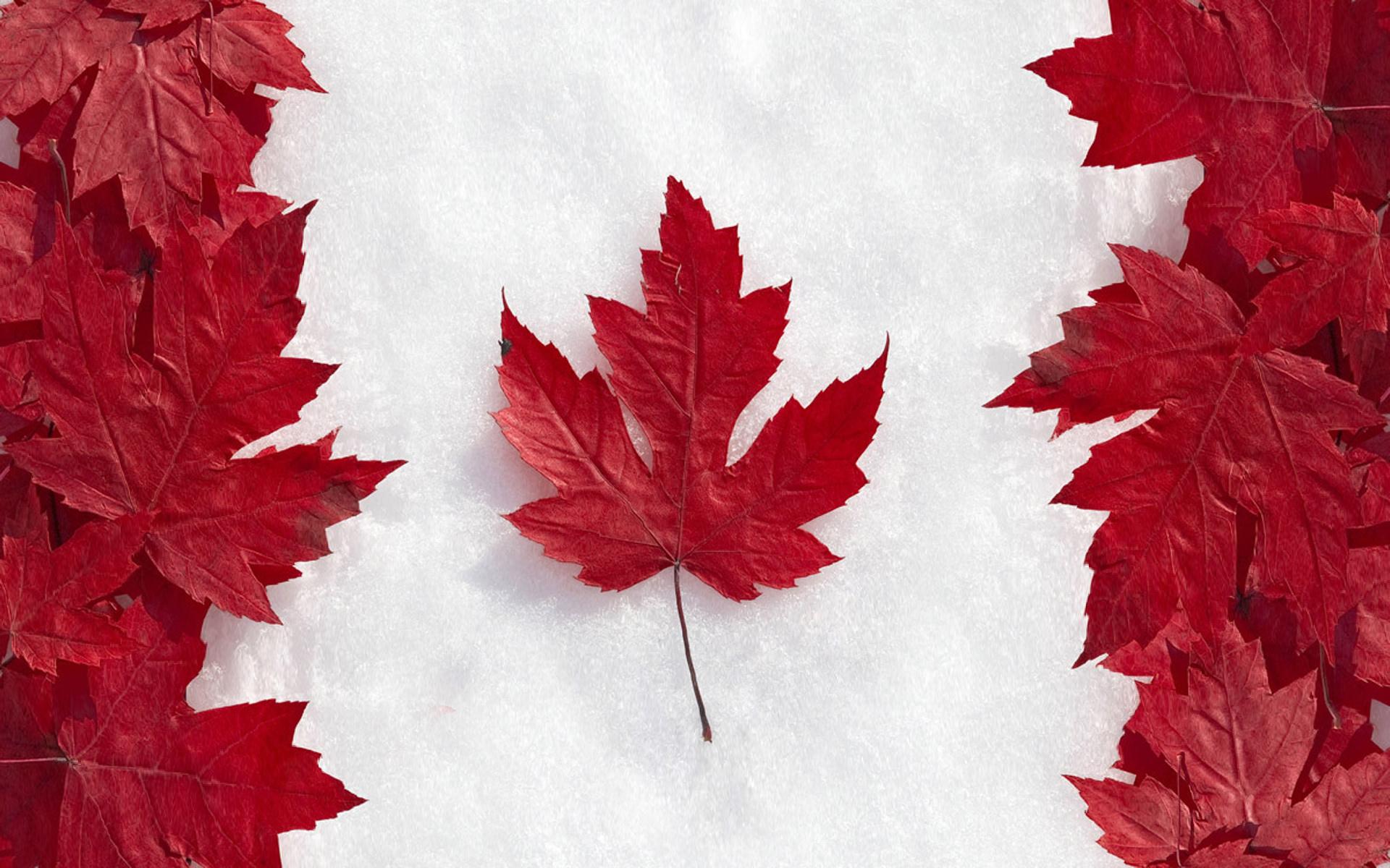Du học Canada Và Những Điều Bạn Cần Biết