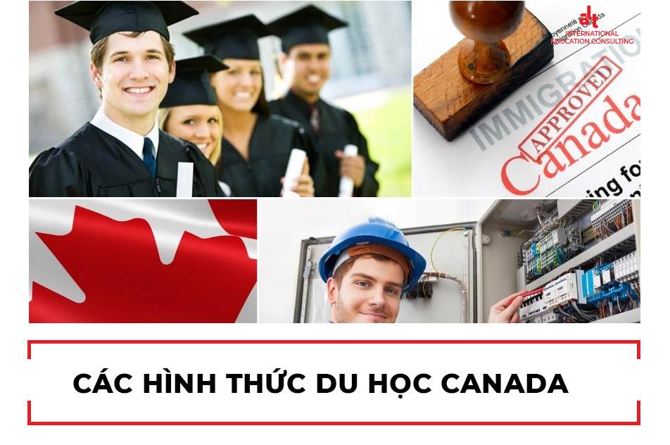 ALT Bản tin Trang bị Du học: Cần làm gì khi mới đến Canada 2021 | ALT Scholarships