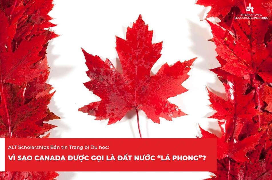 ALT Scholarships Bản tin Trang bị Du học: Văn hóa và khí hậu tại Canada 2021