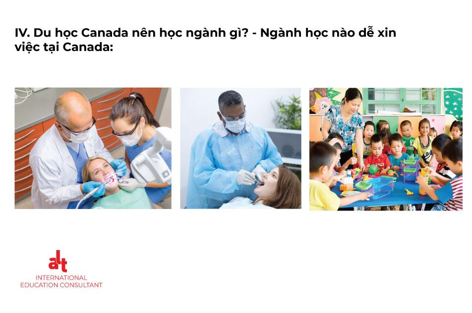 Cẩm nang du học cùng ALT Scholarships: Du học Canada nên học ngành gì? | ALT Scholarships