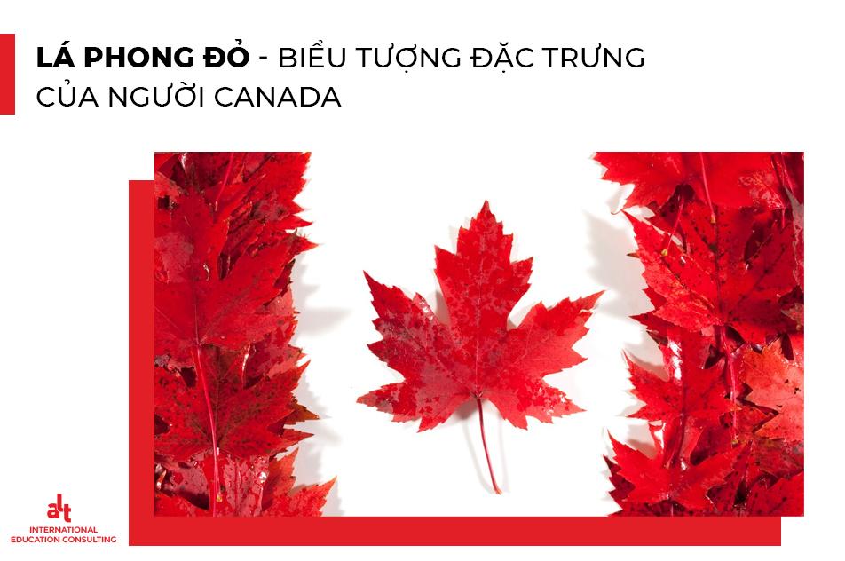 Khám Phá 6 Nét Đặc Trưng Trong Con Người - Văn Hóa Tại Canada | ALT Scholarships